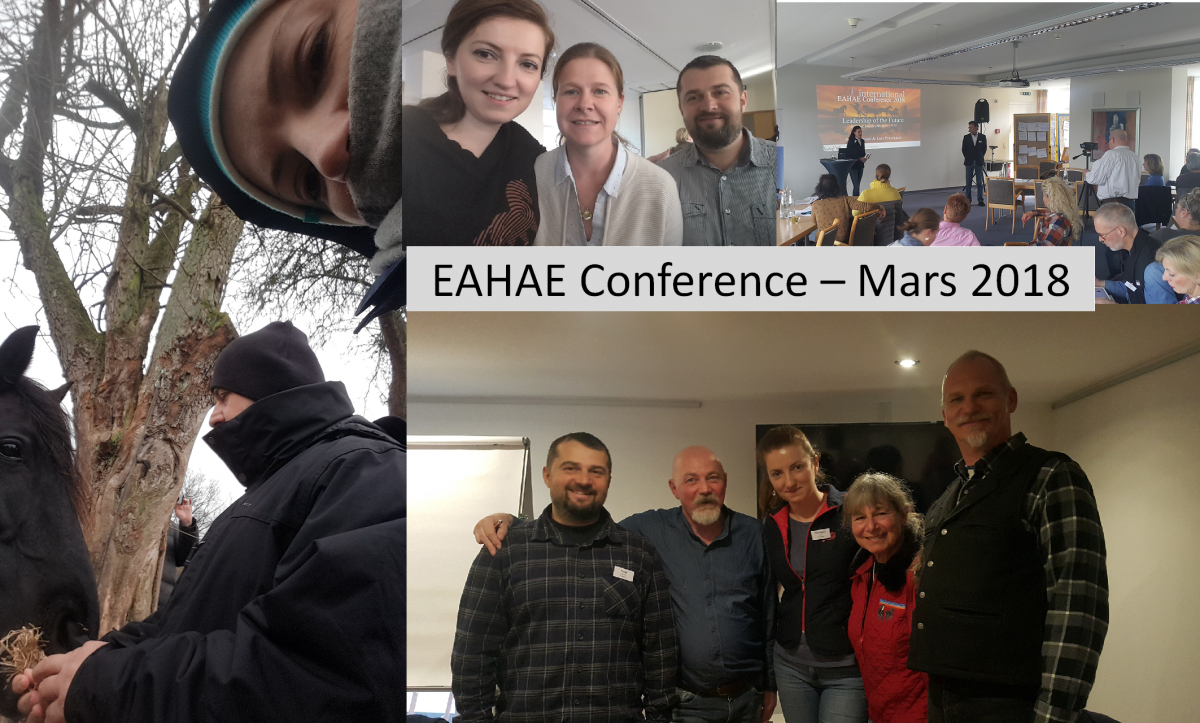 Madalina's learning journal for the EAHAE conference – Mars 2018