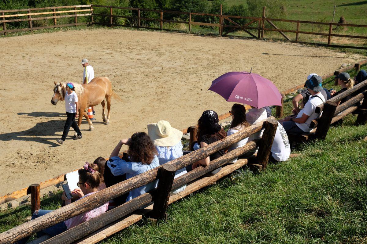 Observarea in educatia asistata de cai | Observing in HAE (2/2)