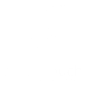 Horse Touch